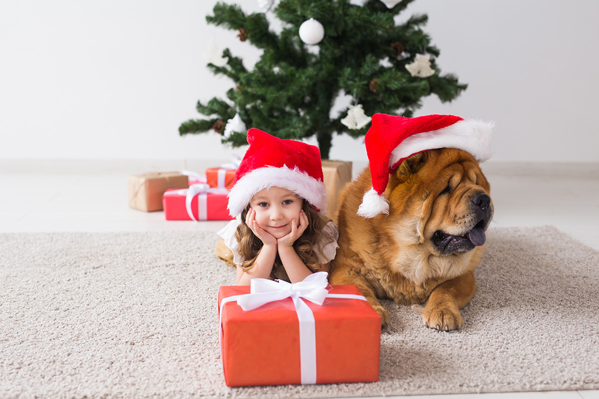 Children and pet concept - Cute girl with dog sitting near the Christmas tree. Merry Christmas and Happy Holidays