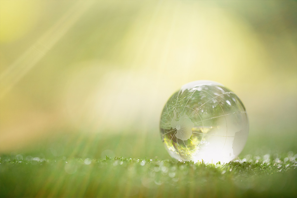 green e ecosostenibilità