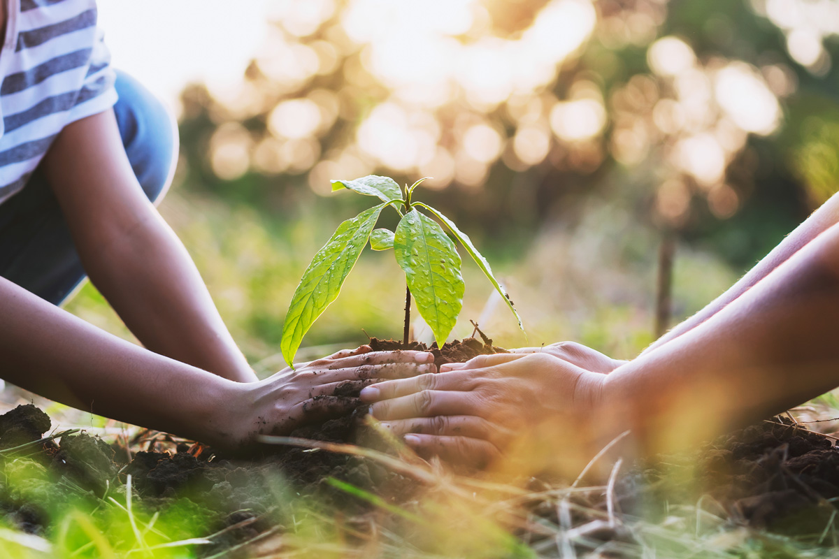 5 giugno 2021 Giornata Mondiale dell'Ambiente