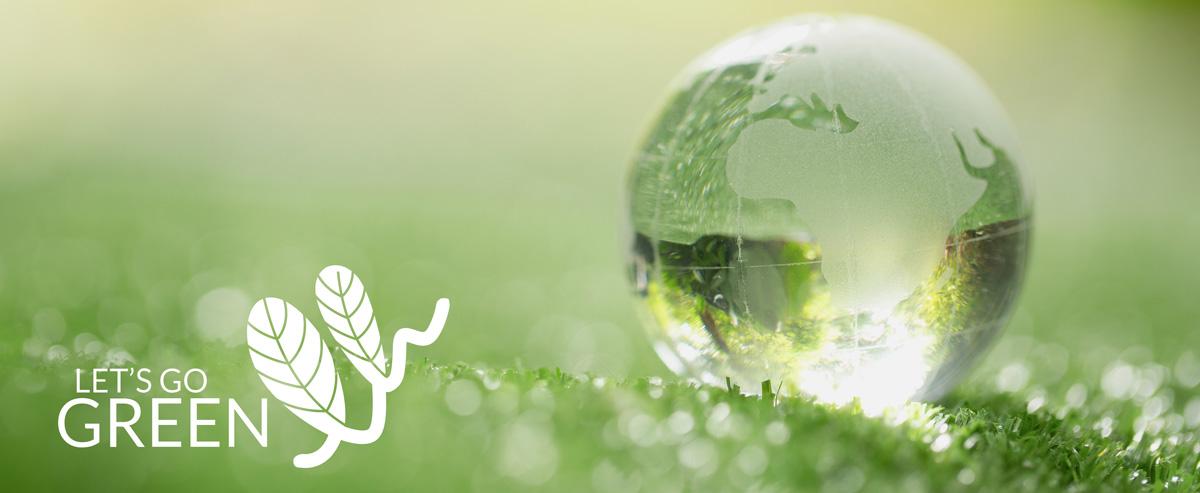 l'impegno del gruppo OLIVO attraverso let's go green
